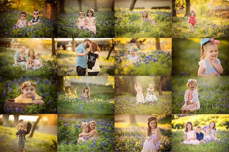 the woodlands bluebonnet mini sessions