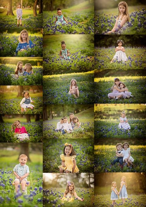 Bluebonnet Photographer - Woodlands Texas